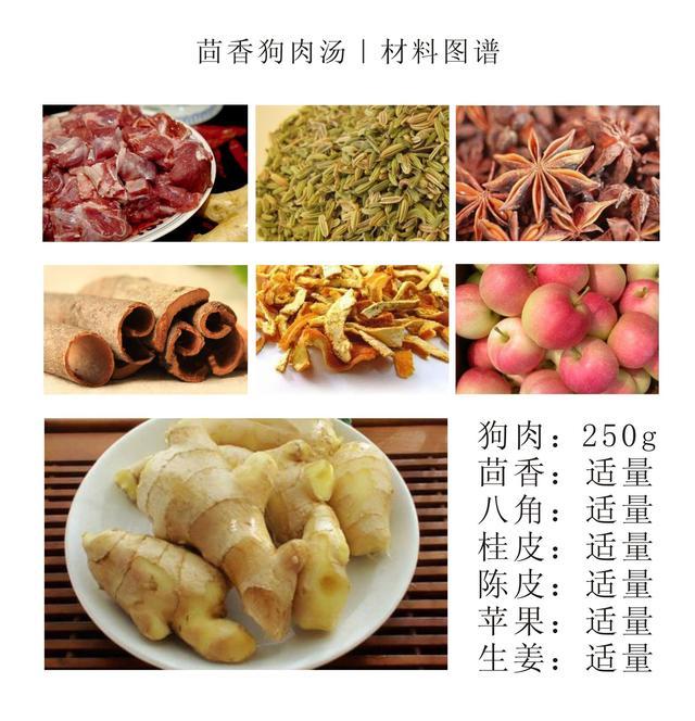 狗肉怎么做才能壮阳,四季汤道|冬季补阳汤之茴香狗肉做法