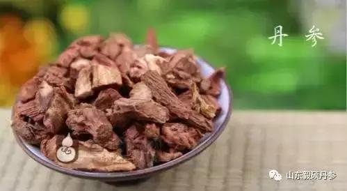 丹参粉的正确吃法,丹参针对13种病的搭配用法