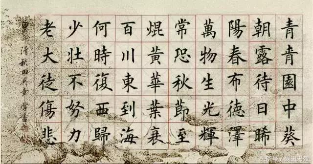 焜怎么读,每日一字:焜(1053)
