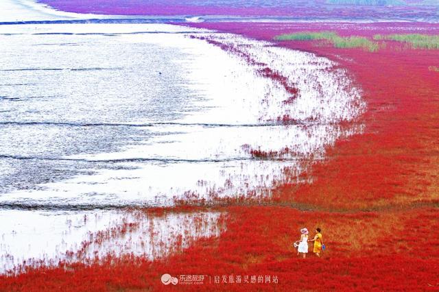 海边的句子,这涌动的红海滩,该以怎样的笔触去描摹