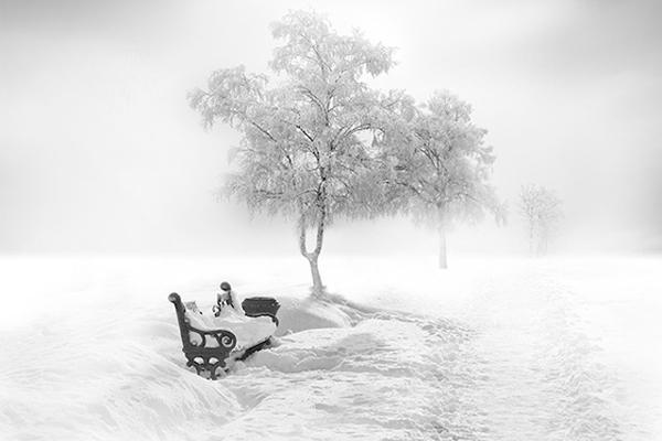 关于雪的句子,关于想去看雪的说说 最喜欢下雪天的句子大全
