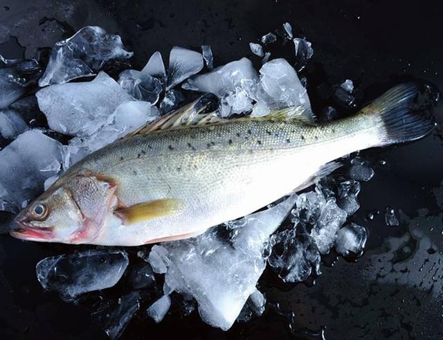 鱼品种,全球最受欢迎的10种冰鲜鱼类,经济价值高,中国各个都有养殖