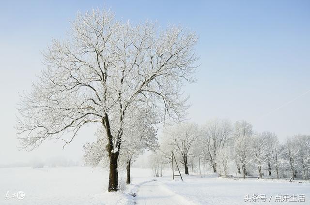 给朋友的祝福语,今天冬至,致我的朋友,最美的祝福送给你!