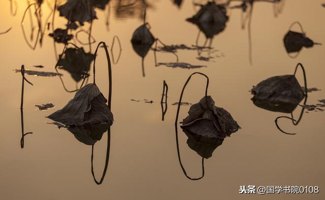 春天的诗,描写春天的100首诗词:枝上柳绵吹又少,天涯何处无芳草!