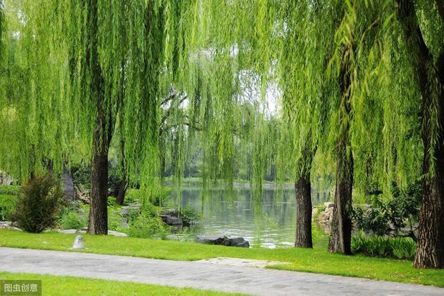 王维的送别诗,王维这首送别诗,妙手天成,以浓浓的春色,喻对友人的思念