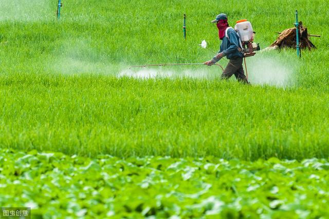 农药品种,很多人容易把杀菌剂和杀虫剂弄混淆,推荐农药分类大全(收藏)