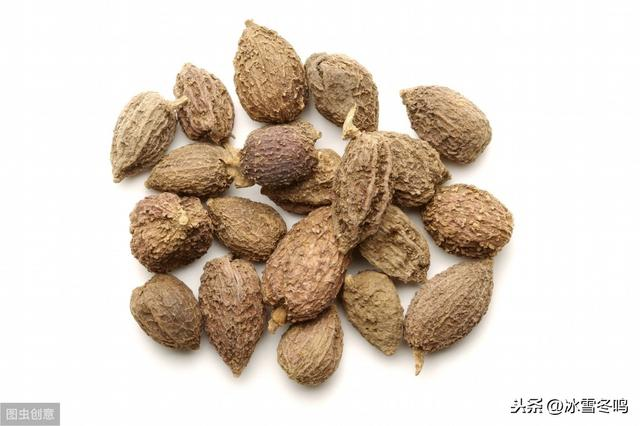 砂仁的吃法,砂仁常用的六种配伍效用定位,理顺搭配和用量才能物尽其用
