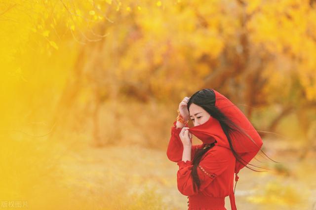 秋天的特征,摄影师提示:拍摄秋景一定掌握这些技巧,请勿错过最佳拍摄时机