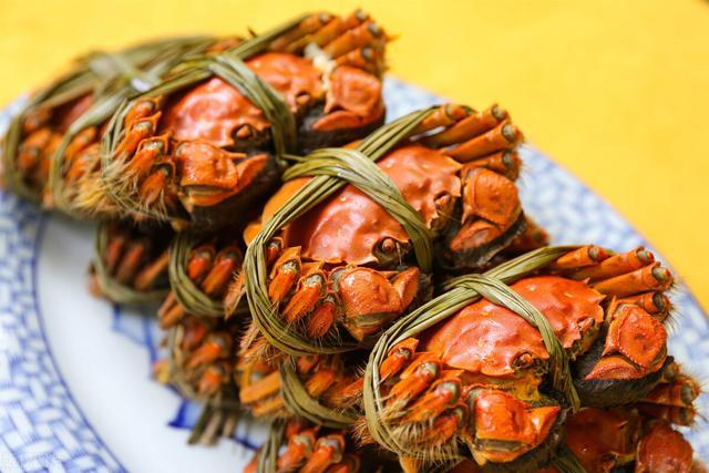 螃蟹品种,除了阳澄湖大闸蟹,中国还有什么拿得出手的好蟹?