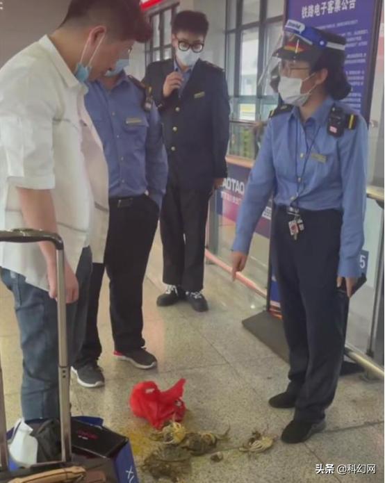 男子被乘务员劝阻当场踩死螃蟹,乘高铁为什么不让带活物