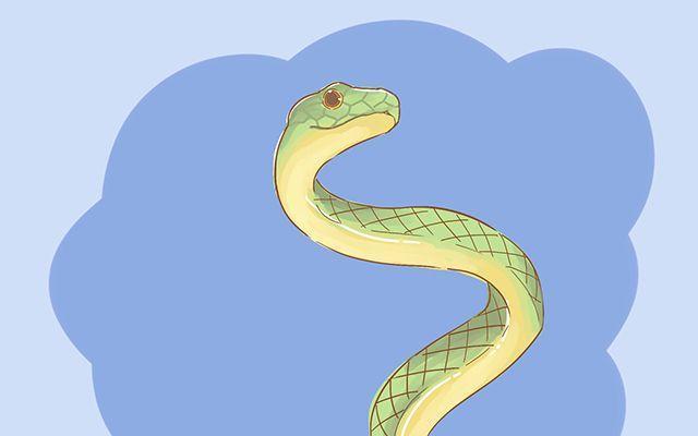 周公解梦梦见很多蛇,孕期那些神奇的胎梦,相传只有孕妈才明白的暗示,你经历过吗?