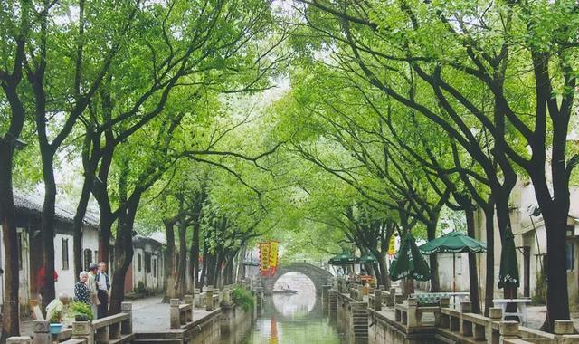 苏州旅游攻略,江南水乡怎么玩?苏州游玩攻略大汇总,园林古镇美食全都有!