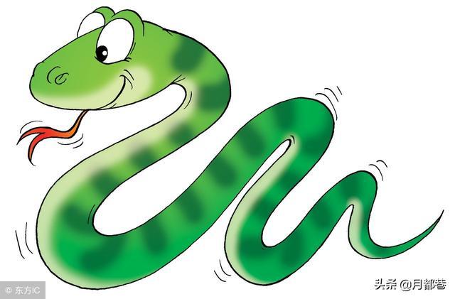 周公解梦梦见很多蛇,女性梦到蛇预示着什么