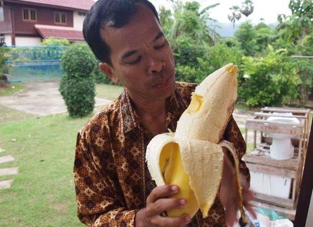 香蕉的品种,看看世界上最奇怪的这4种香蕉!各有特色!