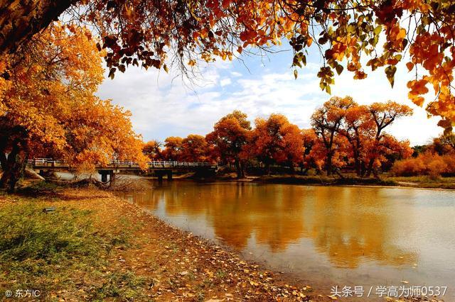 古诗有哪些,秋天的诗句有哪些 描写秋天景色优美古诗