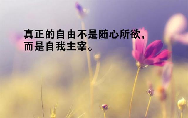 给女孩留言的暖心短句,致女人的经典句子,句句暖心,挑符合心情的发朋友圈!