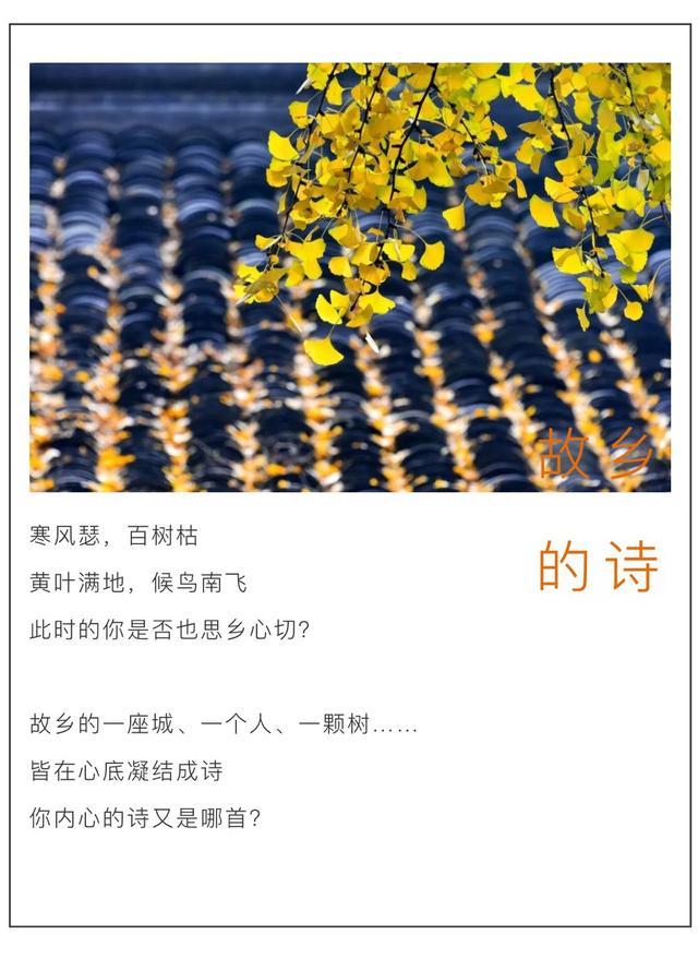 武汉的诗,汉诗   读完这些诗,想家了
