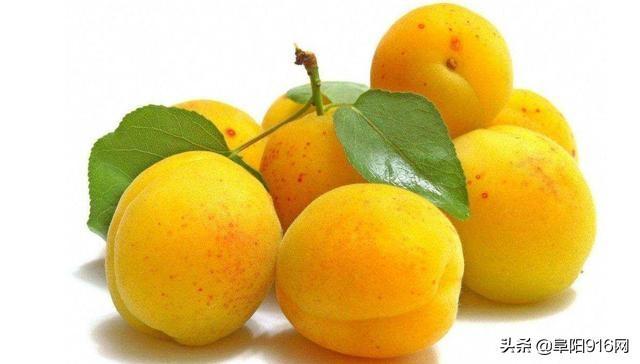 杏干的吃法,杏子5种最好吃的做法,简单美味又馋人,看看你喜欢吃哪种?...