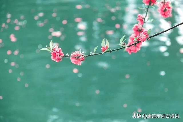 春天的古诗有哪些,春天的样子
