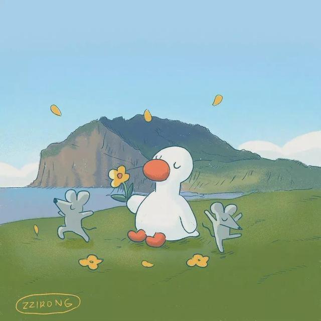鸭子图片,可爱鸭图片