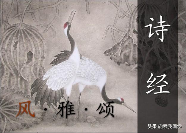 最早的诗,中国最早诗歌总集《诗经》原文、译文、注释、赏析!(芣苢篇)