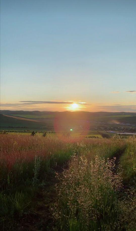 内蒙古大草原图片,内蒙古呼伦贝尔大草原美景欣赏(十二)