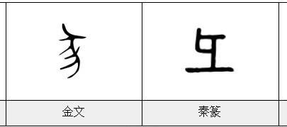 彘怎么读,《漢字的字元·鳥獸動物》彑/彐