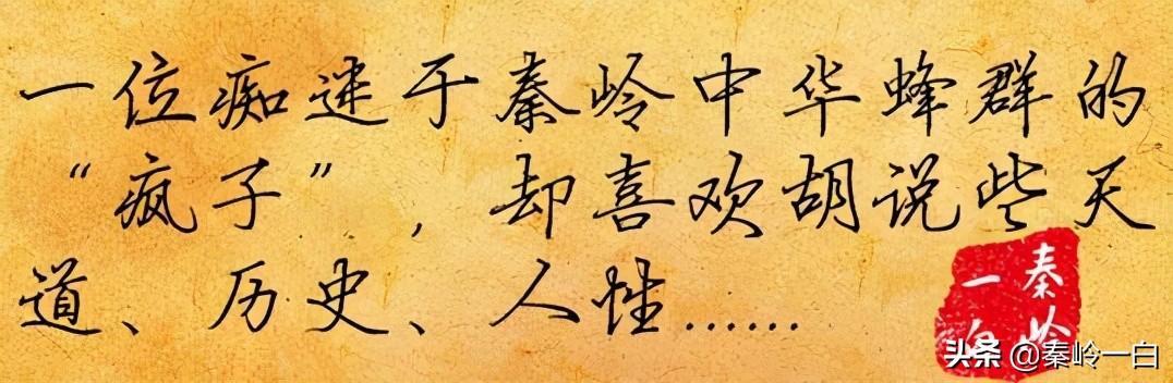 姓罗的名人,罗隐:十几次落榜的文艺青年,终于成为唐朝第一愤青