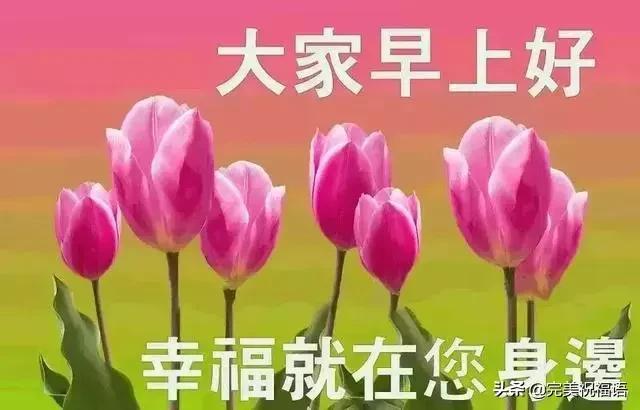 七月的祝福语,7月最精彩的早安带字图片祝福语送给大家