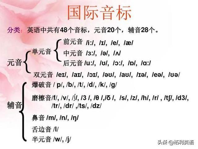 元音字母有哪些,48个英语音标表:20个元音+28个辅音,学发音必备