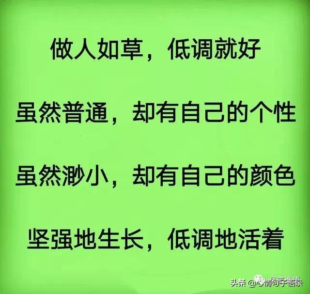 草的句子,像小草一样做人,挺好!(句句入心)