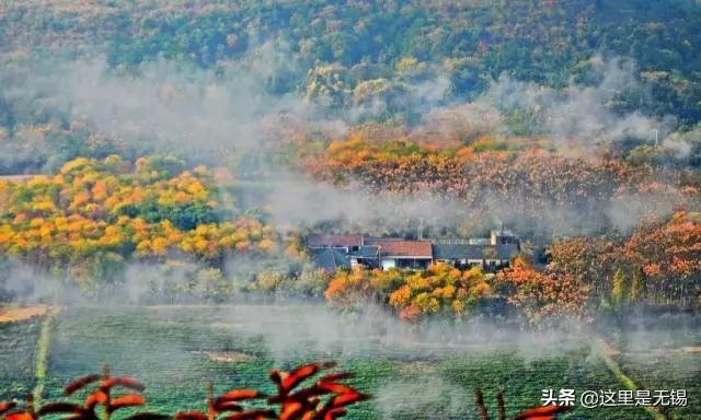 宜兴竹海风景区,无锡的秋色渐入佳境,良心推荐八个宜兴秋游胜地