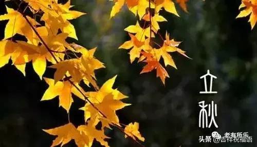 立秋祝福语,今日立秋 ,送给群里的每一位朋友~越早打开越好