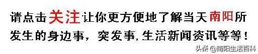 斯的解释,30个南阳话之最,看懂的都是老南阳人