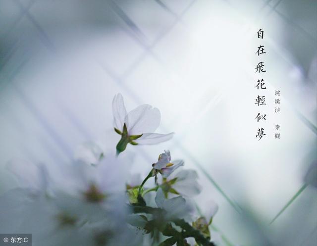 佛说人生感悟的句子,佛经中最有禅意的人生感悟,深刻入骨,足以受用一生!
