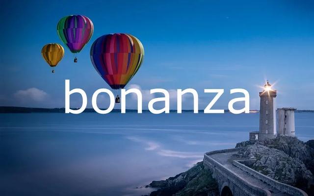 每日单词:bonanza