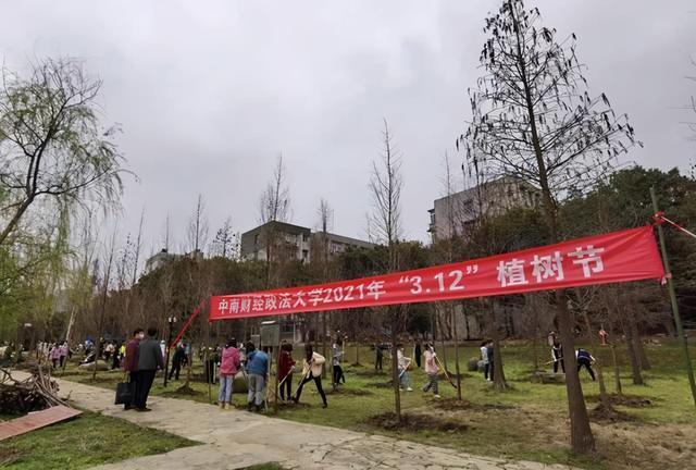 """3月12日是什么节日,""""3·12""""植树节 师生共植百株水杉为建党百年献礼"""