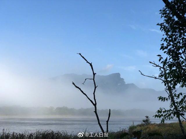 神龙架风景区,随手拍大片!湖北神龙架林区晨雾宛如人间仙境