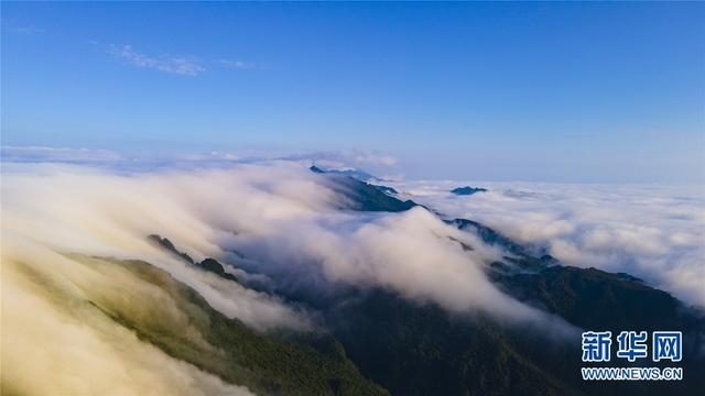 大明山风景区,广西大明山:秋云成海 蔚为壮观