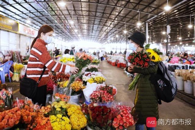 """陈村花卉世界,广东多地取消或""""瘦身""""花市,代表委员呼吁花市进社区"""