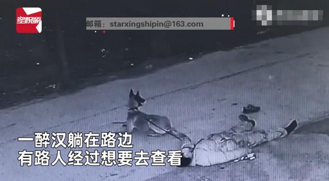 主人醉倒路边宠物狗忠心死守身旁!连声吼叫求救,路人却反被吓跑 全球新闻风头榜 第2张