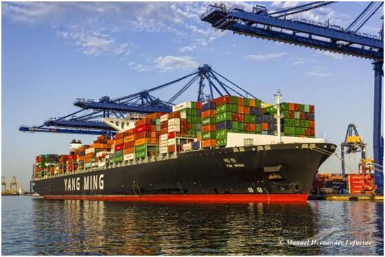 外媒:苏伊士运河恢复通畅后第一艘通航货船,悬挂中国香港特区区旗 全球新闻风头榜 第2张