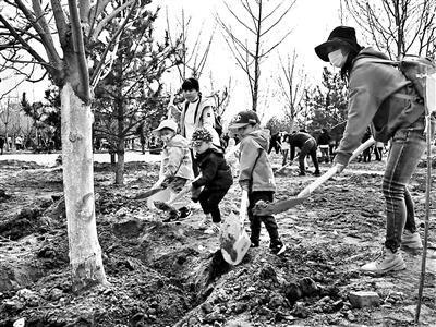 北京市简介,北京:今春以来121万市民参与义务植树