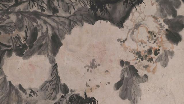 牡丹花图片,今日谷雨,宜赏牡丹——世人爱牡丹图鉴