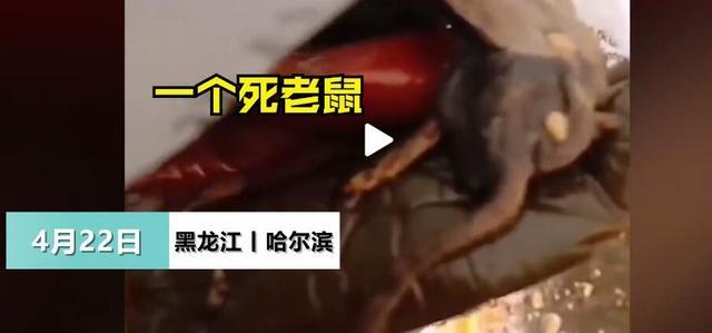 哈尔滨男子超市买咸菜吃出死老鼠:经销商说检查不出病不管费用 全球新闻风头榜 第1张