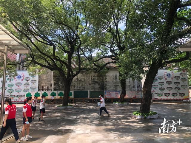 二实验小学,百年老校新活力⑨ 广二师实验小学:培养有大爱情怀的现代学生