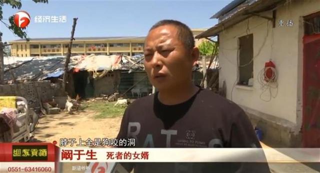 安徽一老人被狗咬死,事后狗上吊自杀?村干部:狗主人自己打死的 全球新闻风头榜 第2张