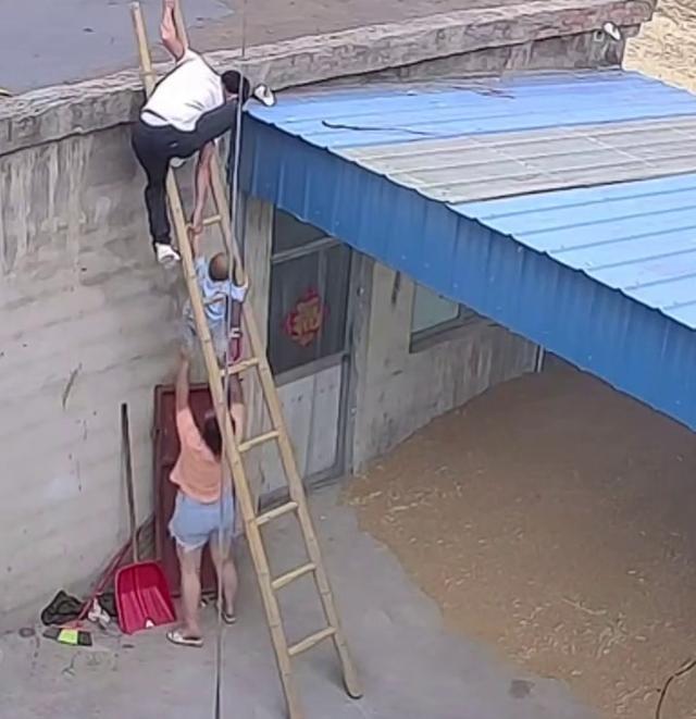 小宝宝尾随爸爸爬上梯子险些掉下,网友:隔着屏幕都害怕 全球新闻风头榜 第3张