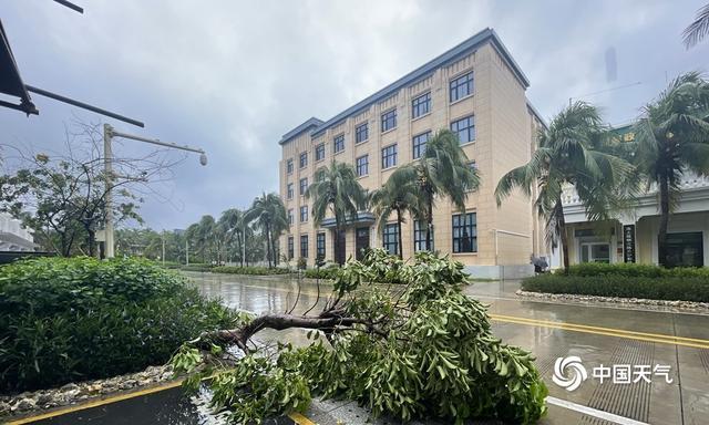 """近5年来影响海南的最强台风""""圆规""""致当地海水倒灌大树倒塌 全球新闻风头榜 第2张"""