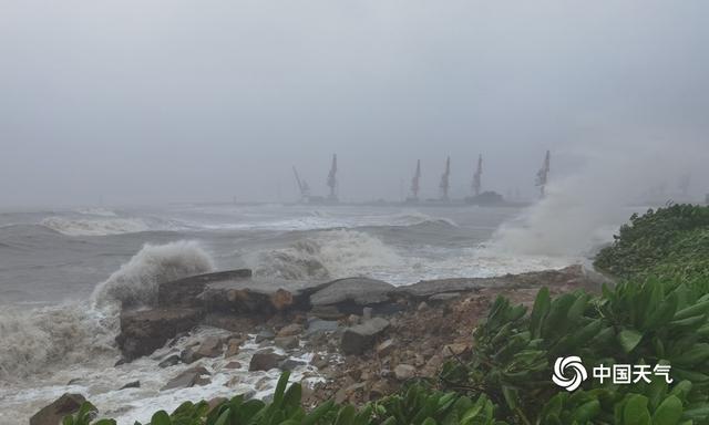 """近5年来影响海南的最强台风""""圆规""""致当地海水倒灌大树倒塌 全球新闻风头榜 第3张"""